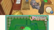harvest_moon_3ds_07