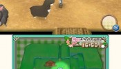 harvest_moon_3ds_09