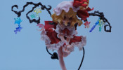 wf2013w - Orchid Seed - (12)