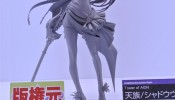 wonfes-2014-summer-orchid-seed- (6)