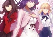 fate stay night heavens feel